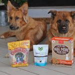 3 Dog Treats You Need for Your Pup