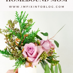 Mother's Day Gift Ideas for the Homebound Mom