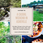 A Casual Weekend in Asheville: the Best Things to Do with your Dogs